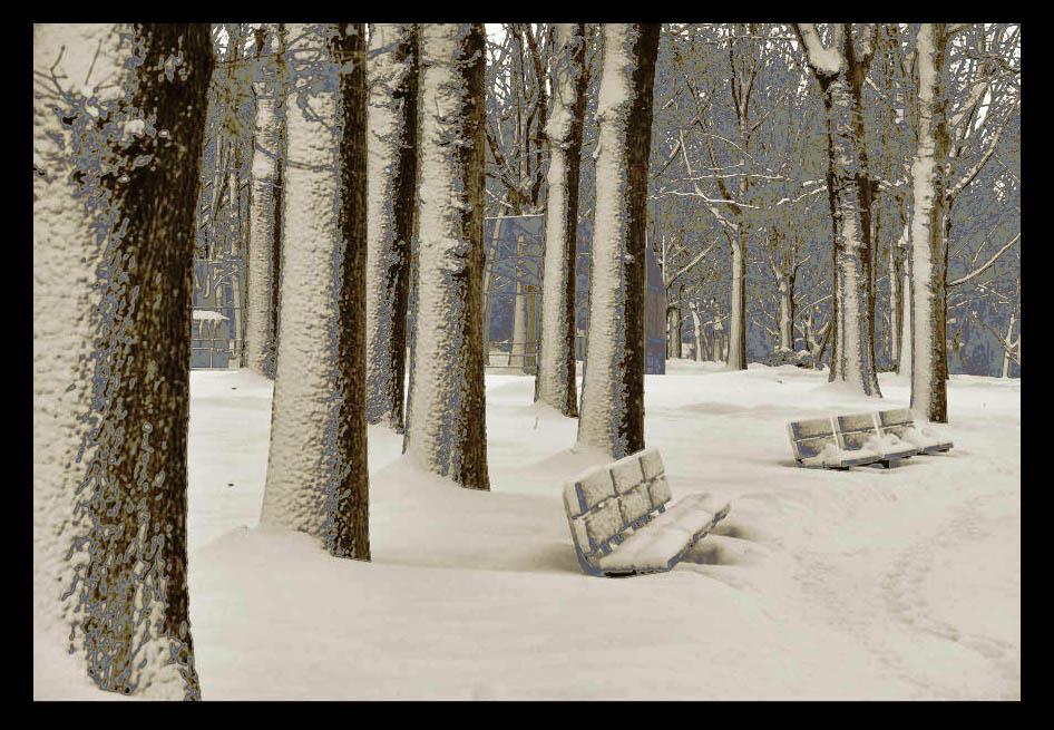 走-拍  公园雪景_图1-5