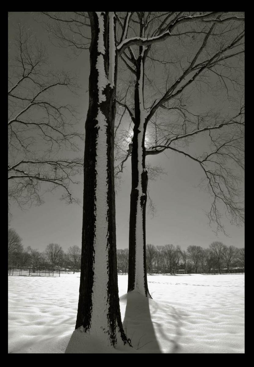 走-拍  公园雪景_图1-6