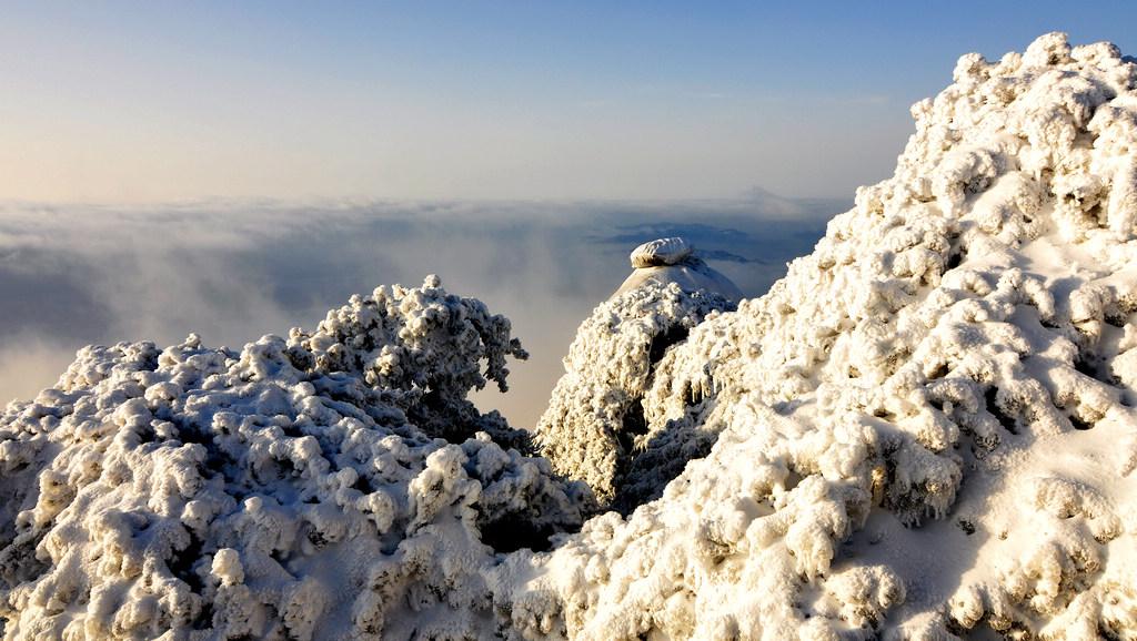 天柱山----雪的风情_图1-14