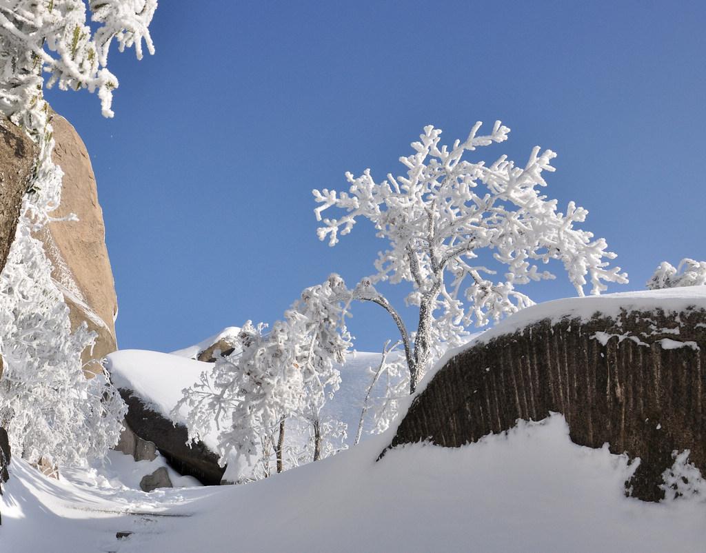 天柱山----雪的风情_图1-6