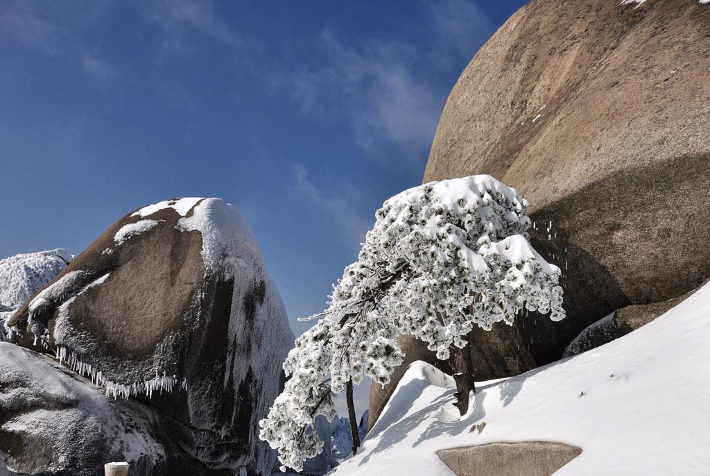 天柱山----雪的风情_图1-3