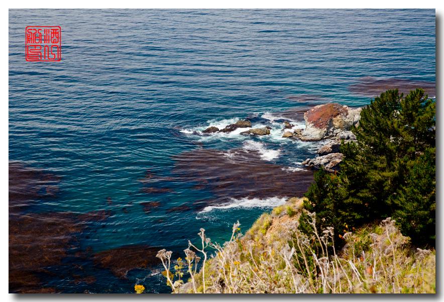 《酒一船》:大苏尔(Big Sur) - 加州最美的海岸线_图2-9