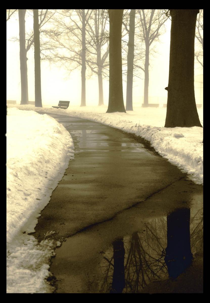走-拍  今天早晨的雾景。_图1-2