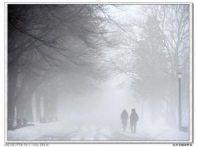 【盲流摄影】浓雾中的可乐娜公园——卡片机