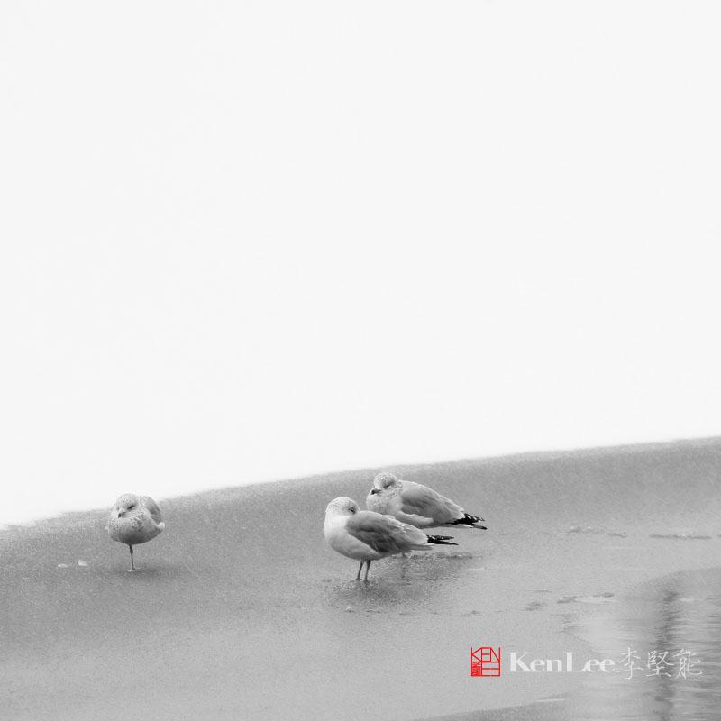 简约雪景_图1-3