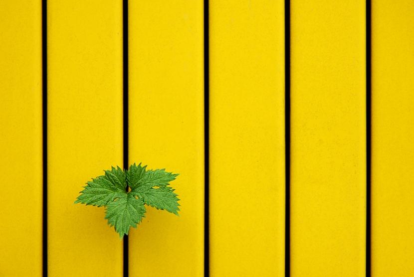 【攝影蟲】極簡主義攝影 Minimalism Photography_图1-2