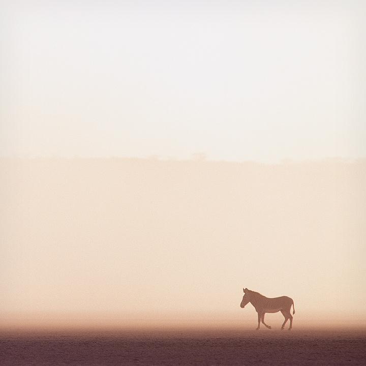 【攝影蟲】極簡主義攝影 Minimalism Photography_图1-23