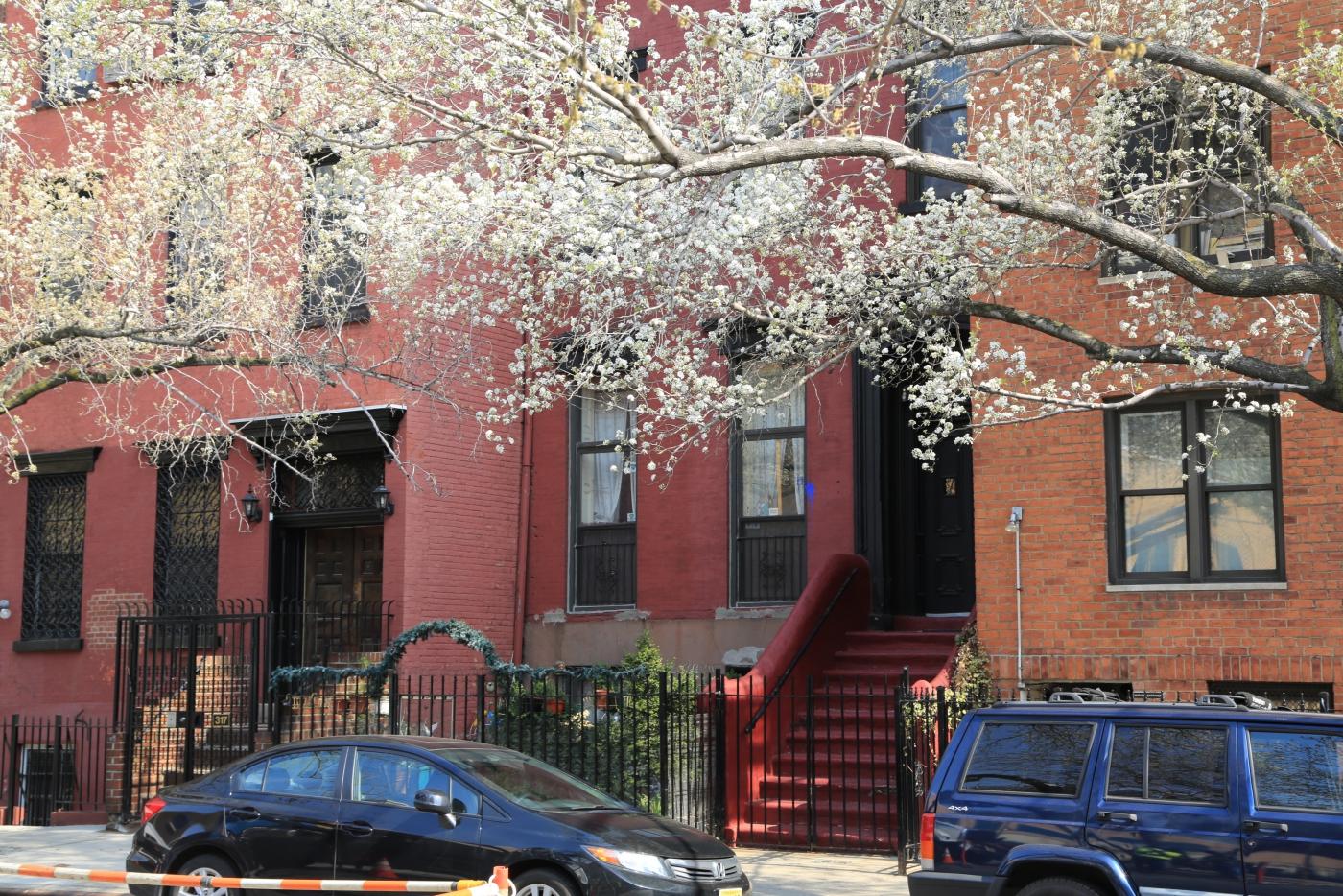 Spring NYC 街拍_图1-9