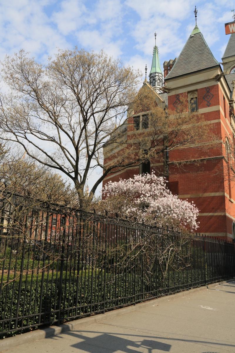 Spring NYC 街拍_图1-5