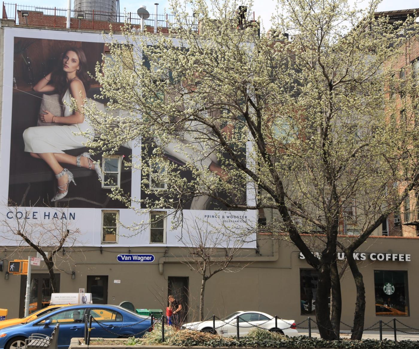Spring NYC 街拍_图1-1