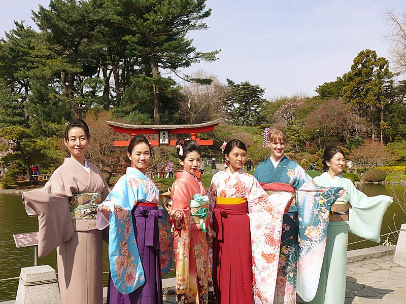 樱花节的异国文化