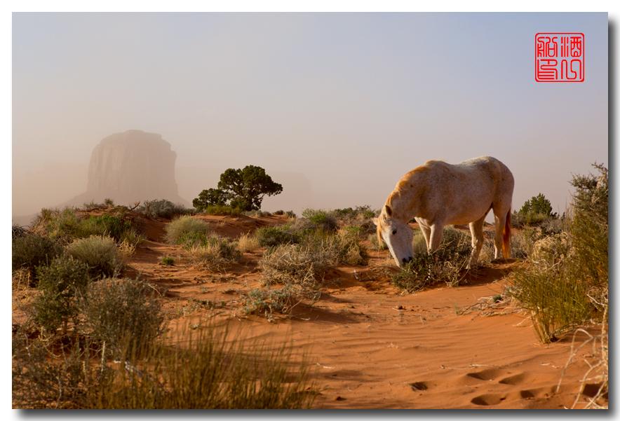 《酒一船》:大漠黄沙碑谷地 - 西行大环圈之一_图3-38