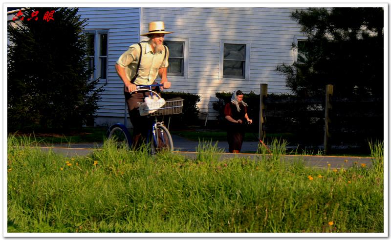 六只眼:驴车马车自行车总能把你颠到家_图1-7