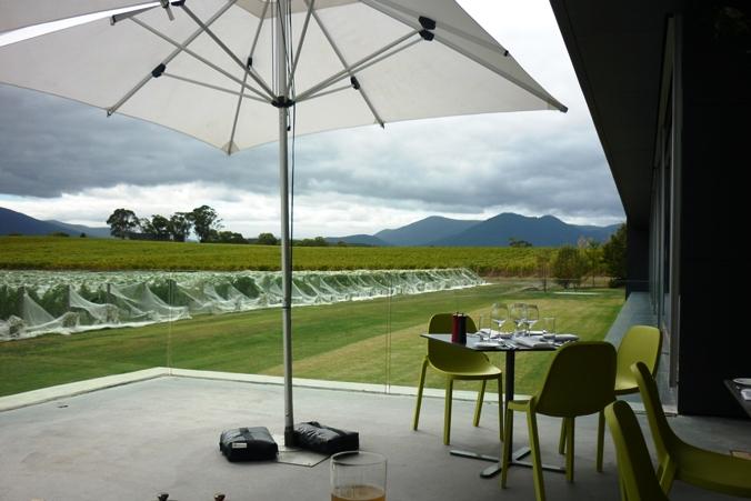 澳洲维省雅拉河谷酒庄----Oakridge_图1-9