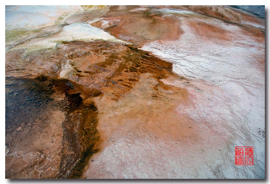 《酒一船摄影》:黄石公园的猛犸热泉区_图1-5