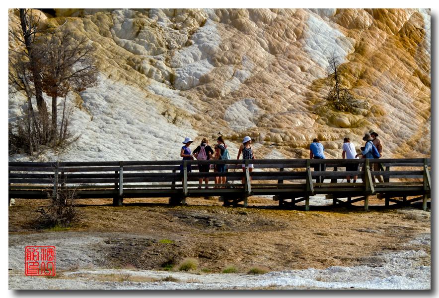 《酒一船摄影》:黄石公园的猛犸热泉区_图1-23