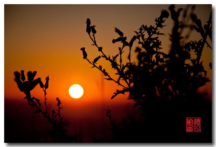 《酒一船摄影》:奥林匹克国家公园的海岸及日落_图1-1