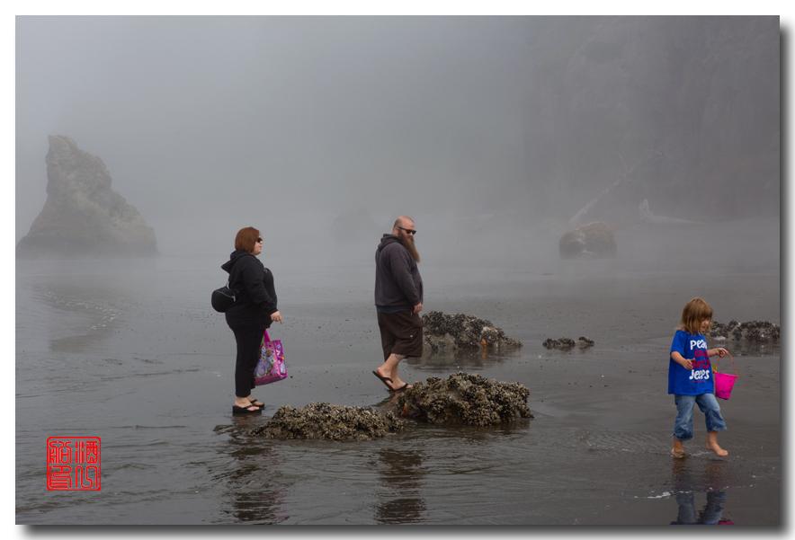 《酒一船摄影》:奥林匹克国家公园的海岸及日落_图1-14