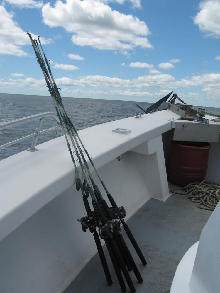 在大西洋上钓鱼_图1-11