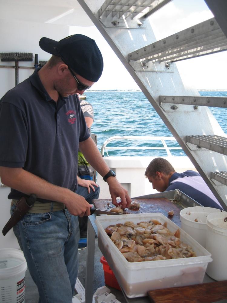 在大西洋上钓鱼_图1-16