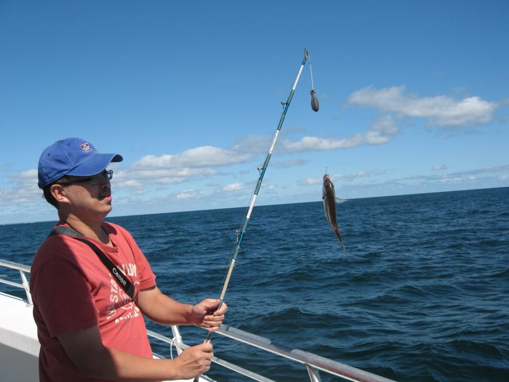 在大西洋上钓鱼_图1-21