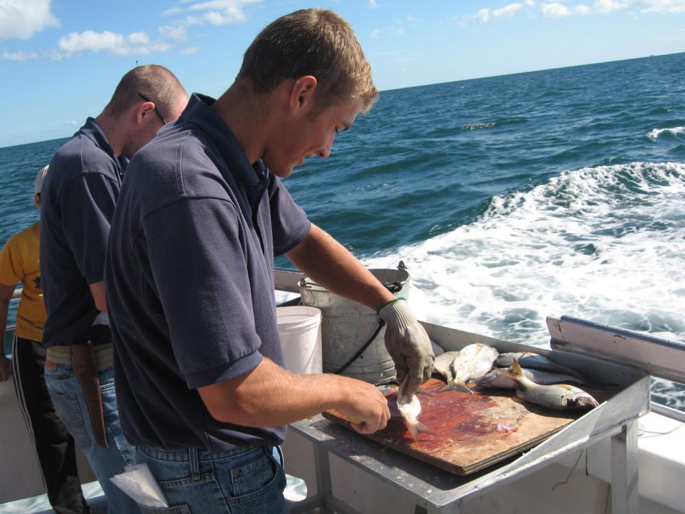 在大西洋上钓鱼_图1-23