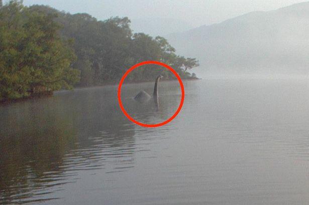 英摄影师意外拍到疑似尼斯湖水怪深水生物_图1-1