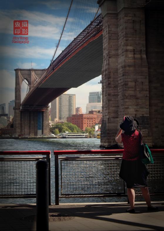 【攝影蟲】南街/FDR/布魯克林橋_图1-5