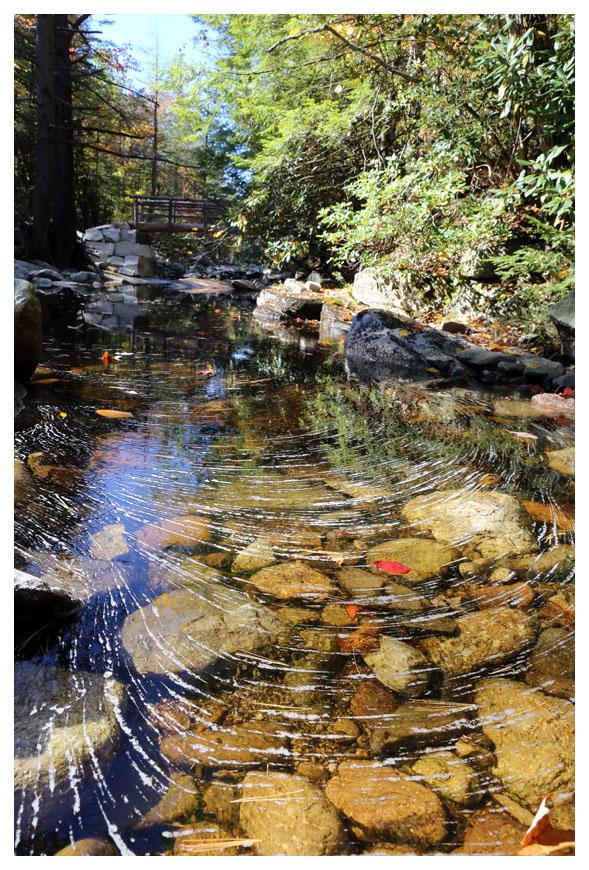 Minnewaska 州立公園秋色_图1-2