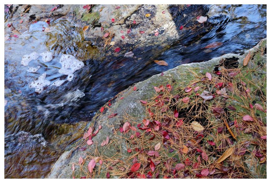 Minnewaska 州立公園秋色_图1-4