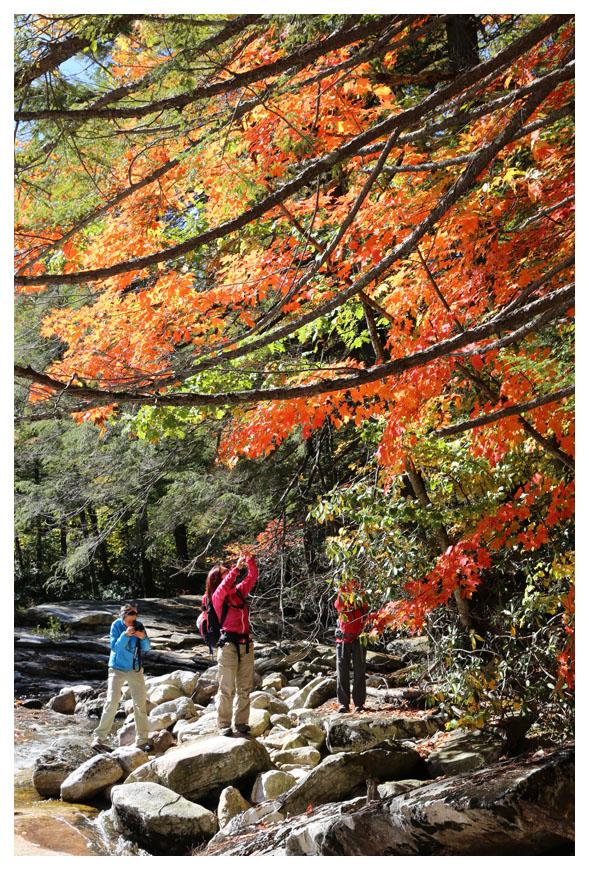 Minnewaska 州立公園秋色_图1-5