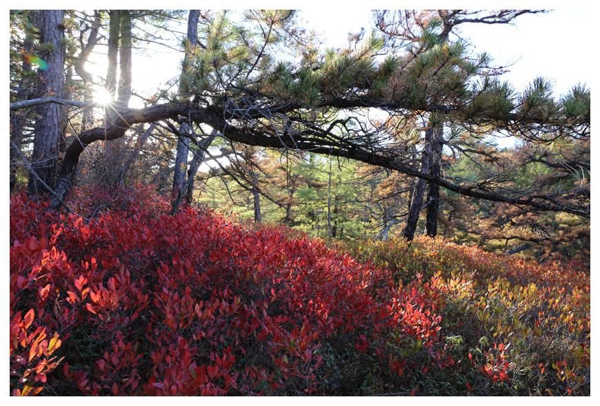 Minnewaska 州立公園秋色_图1-12