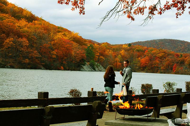 记录你秋天的色彩 纽约!纽约!_图1-2