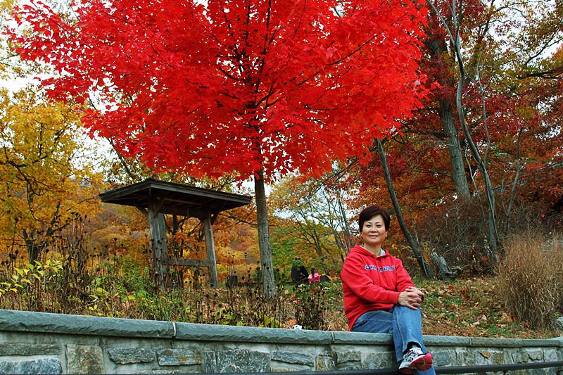 记录你秋天的色彩 纽约!纽约!_图1-5