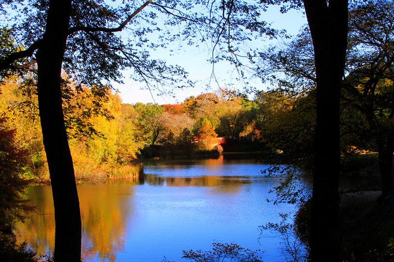 记录你秋天的色彩 纽约!纽约!_图1-10