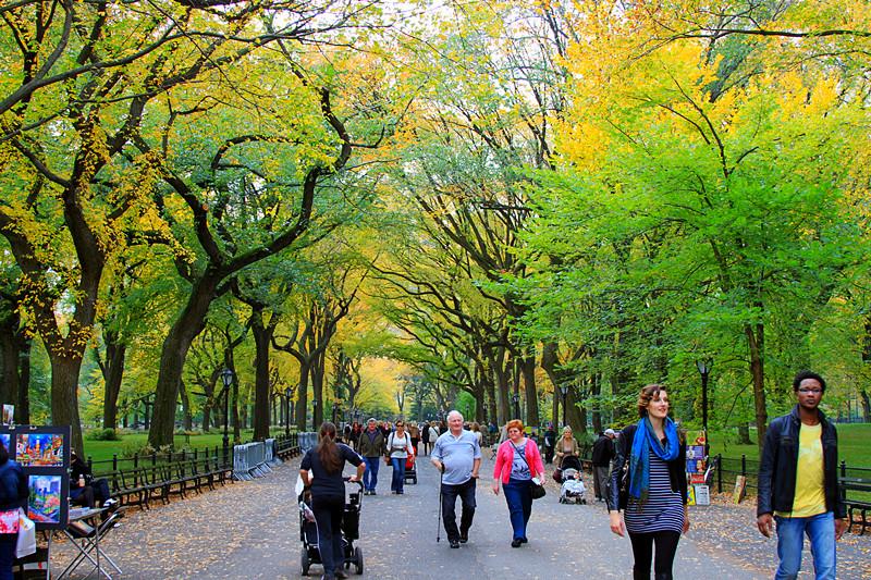 记录你秋天的色彩 纽约!纽约!_图1-11