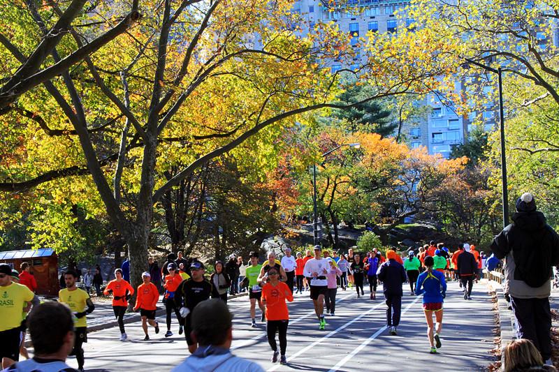记录你秋天的色彩 纽约!纽约!_图1-13