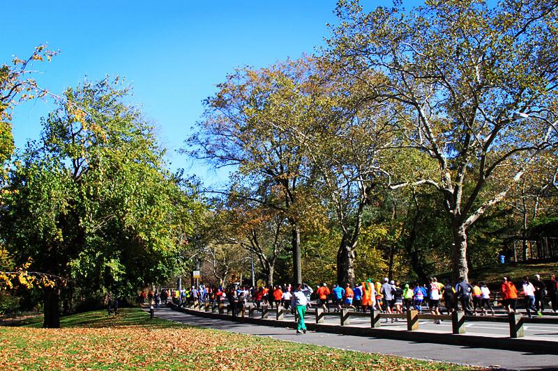记录你秋天的色彩 纽约!纽约!_图1-15