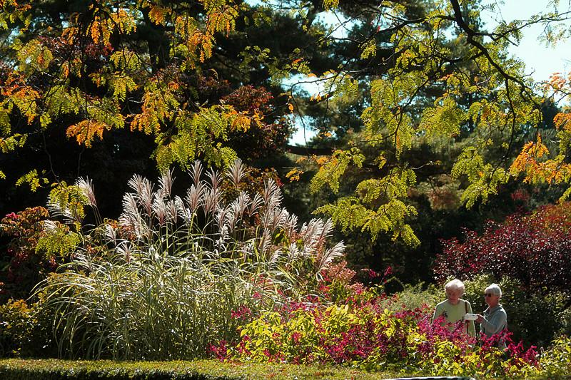记录你秋天的色彩 纽约!纽约!_图1-17