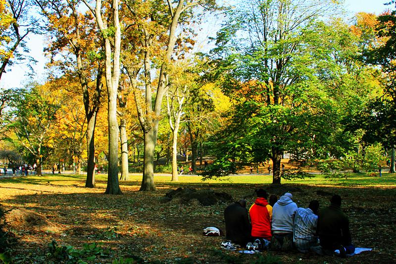 记录你秋天的色彩 纽约!纽约!_图1-20