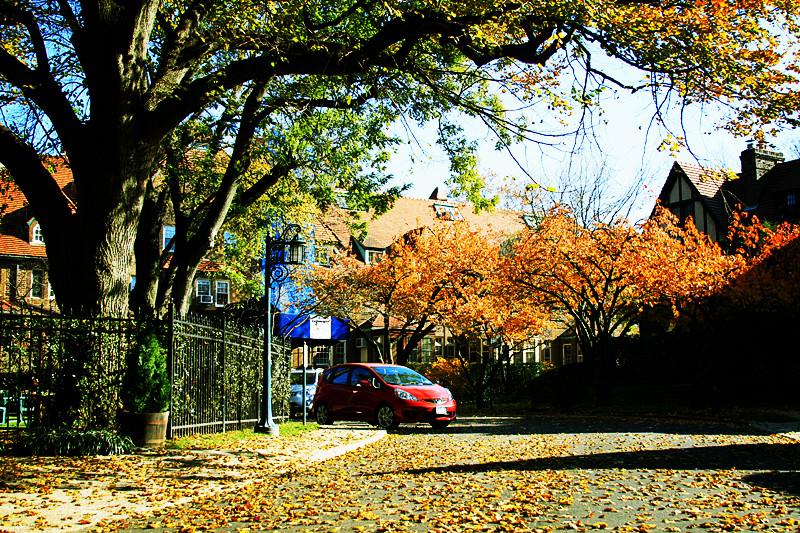 记录你秋天的色彩 纽约!纽约!_图1-21