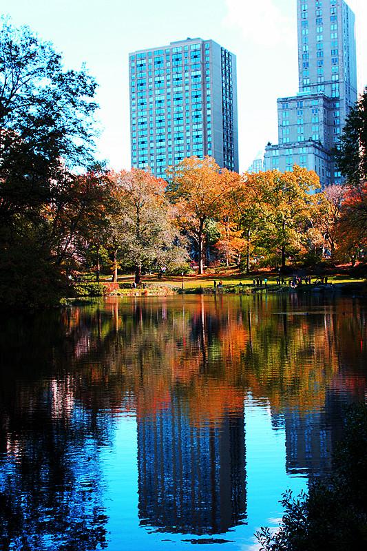 记录你秋天的色彩 纽约!纽约!_图1-22
