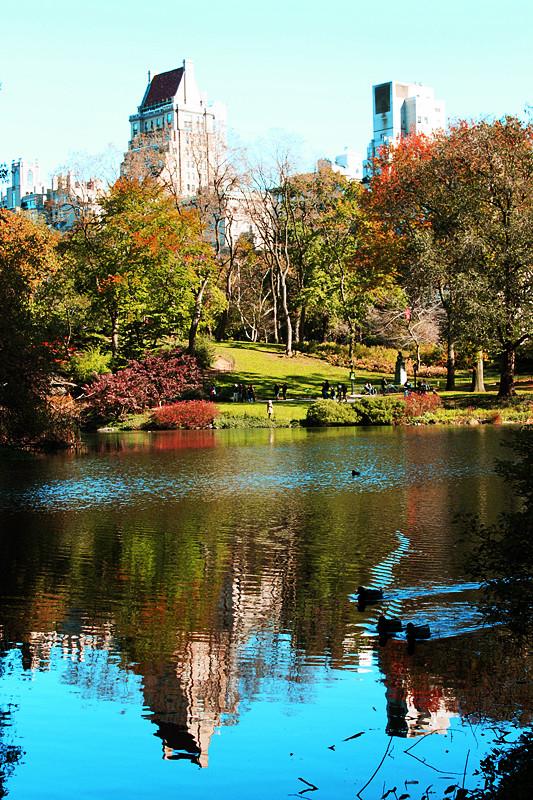 记录你秋天的色彩 纽约!纽约!_图1-23