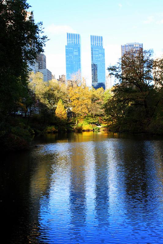记录你秋天的色彩 纽约!纽约!_图1-24