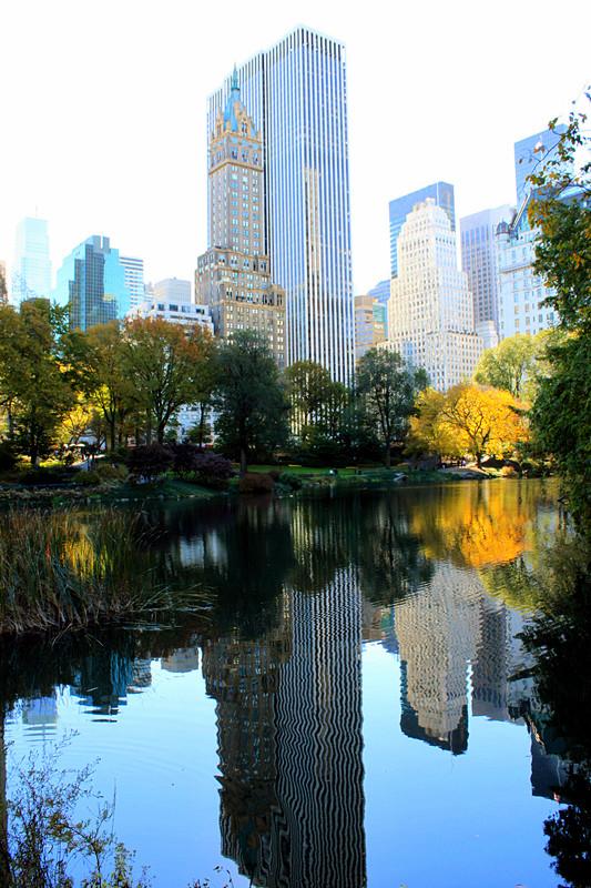 记录你秋天的色彩 纽约!纽约!_图1-26