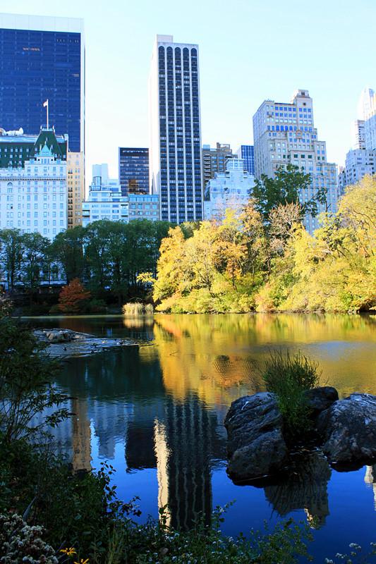 记录你秋天的色彩 纽约!纽约!_图1-28