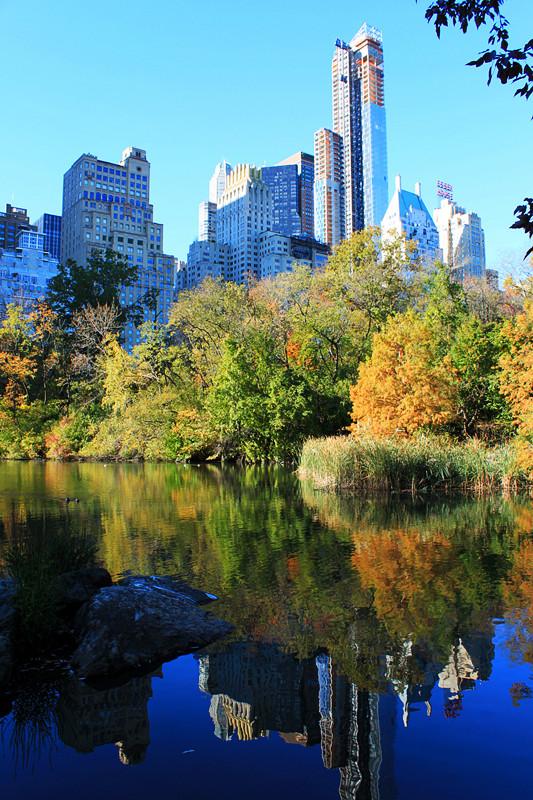 记录你秋天的色彩 纽约!纽约!_图1-31