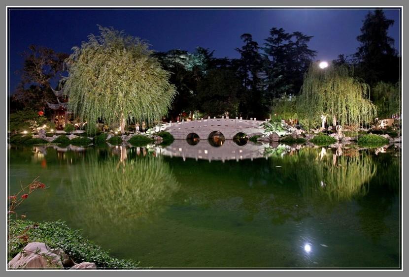 朦胧夜色下的流芳园_图1-4