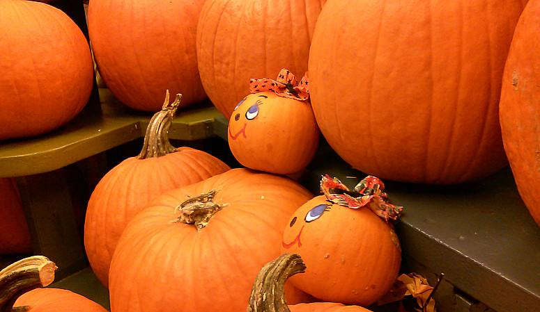10月31日万圣节-拍蜘蛛与南瓜_图1-11