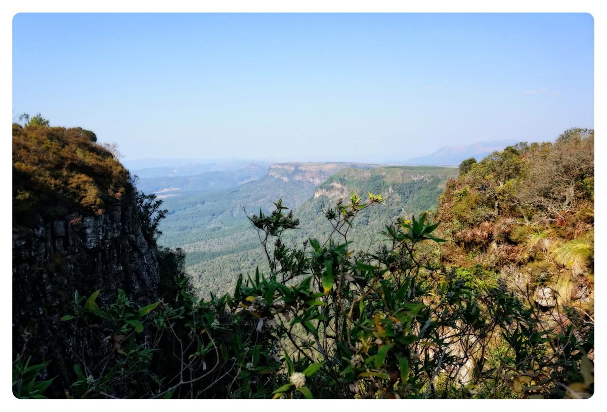 来自南非的相片【心想事成】_图1-24